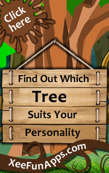 Find Which Tree Suits Your Personality